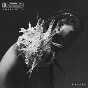 Télécharger l'album Mwaka Moon [Explicit] de Kalash